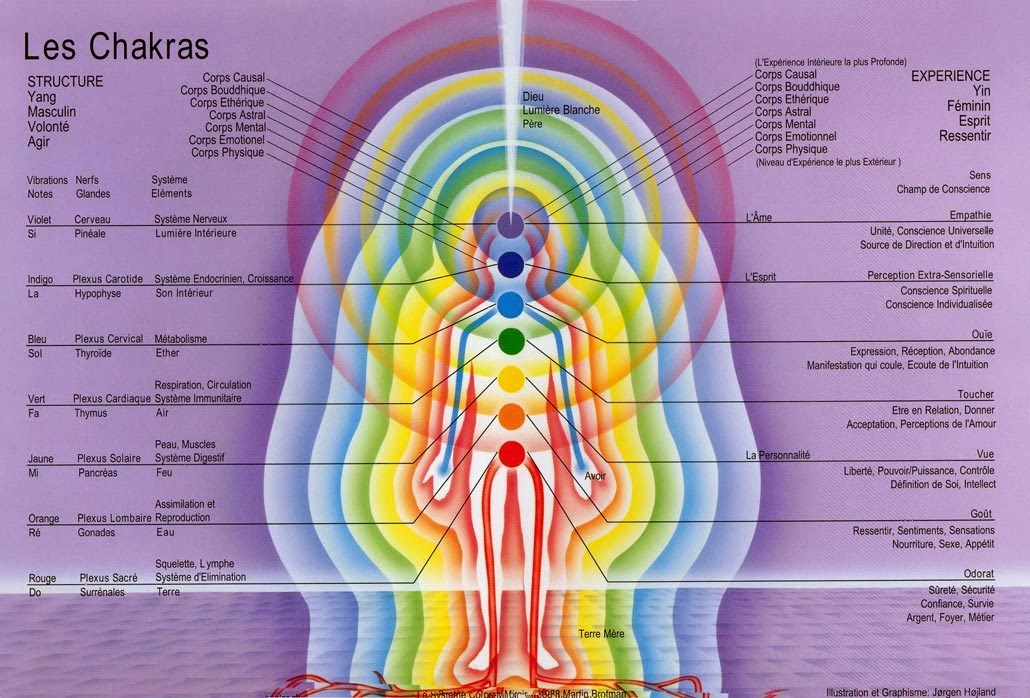 les corps subtils et les chakras