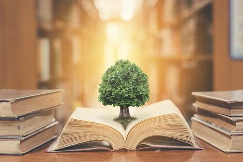 libro-con-un-arbol