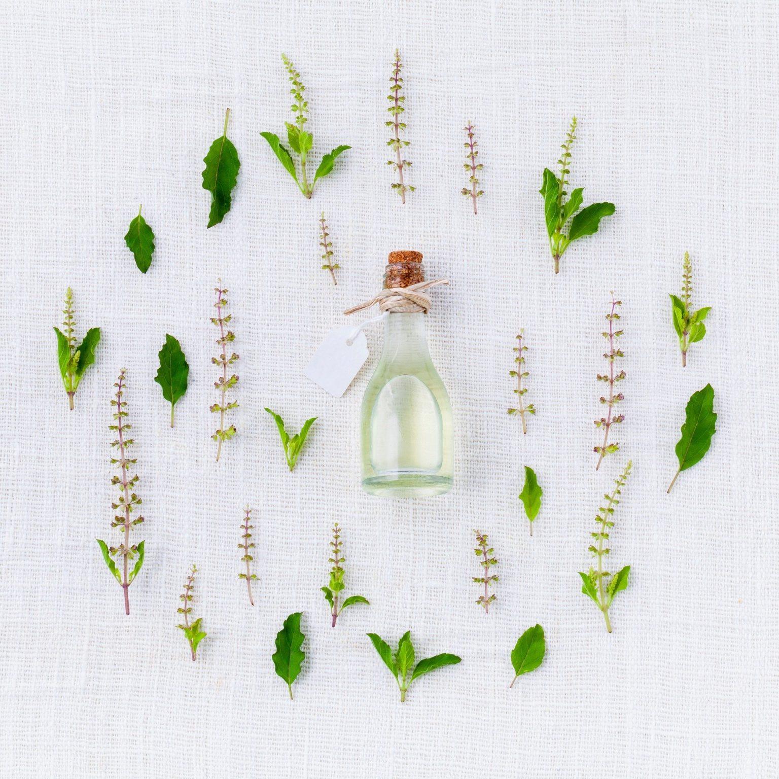 aroma-906137_1920-1536×1536 (1)